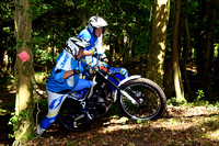 GVCMC Gerry Holdstock Eurocup Trial: Cowcombe Wood - 4th July 2015